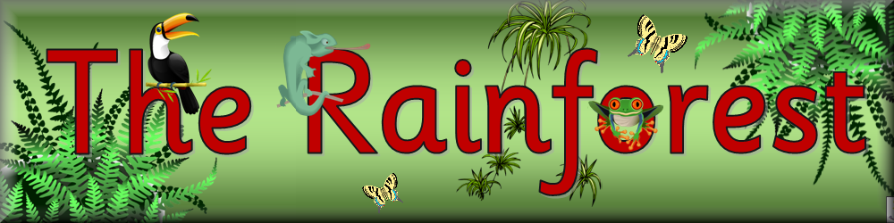 Image result for rainforest topic banner
