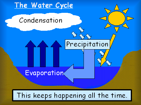 Water Cycle Powerpoint 58